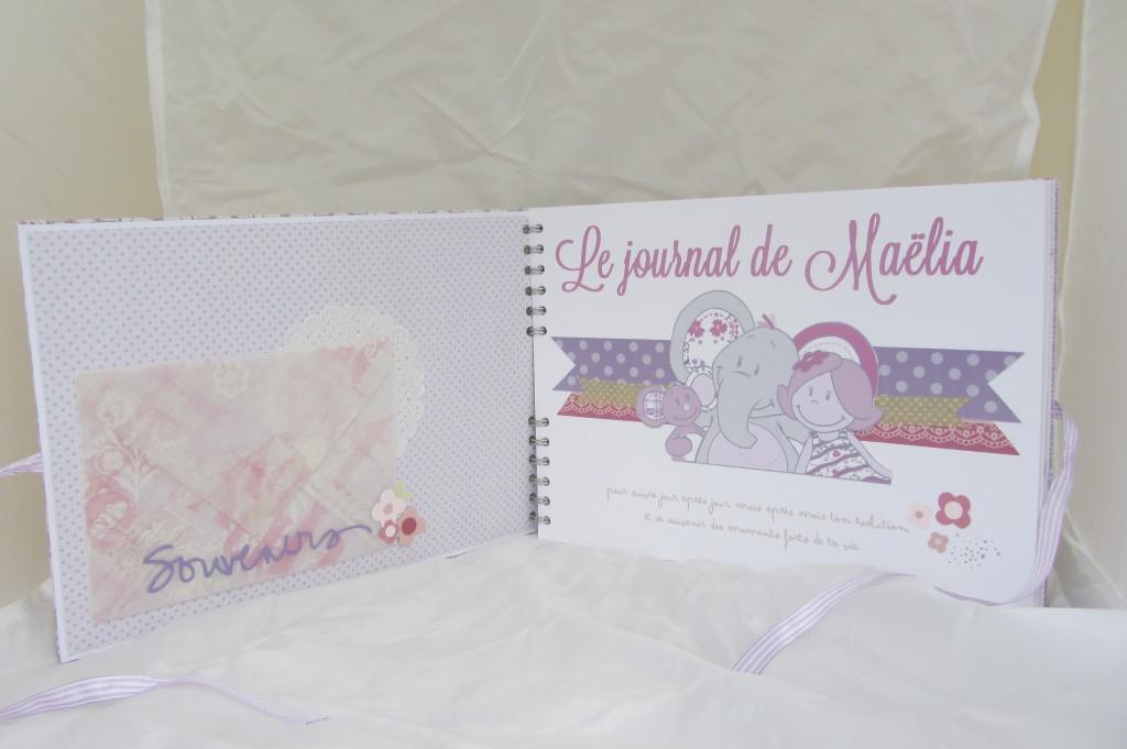Livre de naissance by Riveli