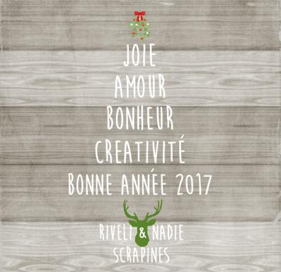 scrapines2017